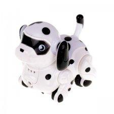 Robotický indukčný psík + fixka