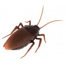 Diaľkovo ovládaný chrobák: Šváb