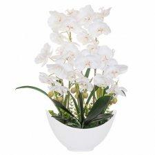 SPRINGOS Umelá orchidea v črepníkovej lodi biela - 60cm