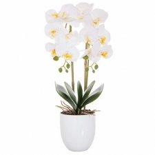 SPRINGOS Umelá orchidea v črepníku biela - 55cm