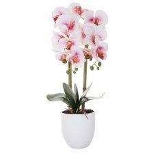 SPRINGOS Umelá orchidea v črepníku ružovo-biela - 55cm