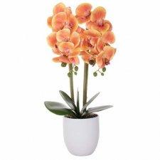 SPRINGOS Umelá orchidea v črepníku žlto-červená - 55cm