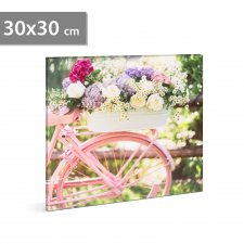 "LED obraz - ""Bicykel"" - 2 x AA, 30 x 30 cm"