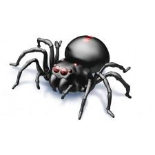 Pavúk na slanú vodu